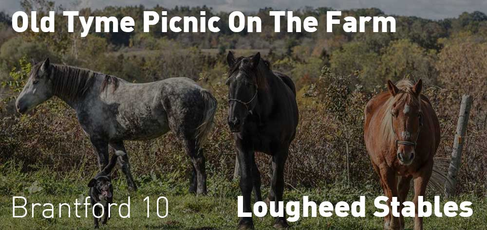 Old Tyme Picnic on the farm | Lougheed Stables | July 1 - August 21, 2018 | 10am each day