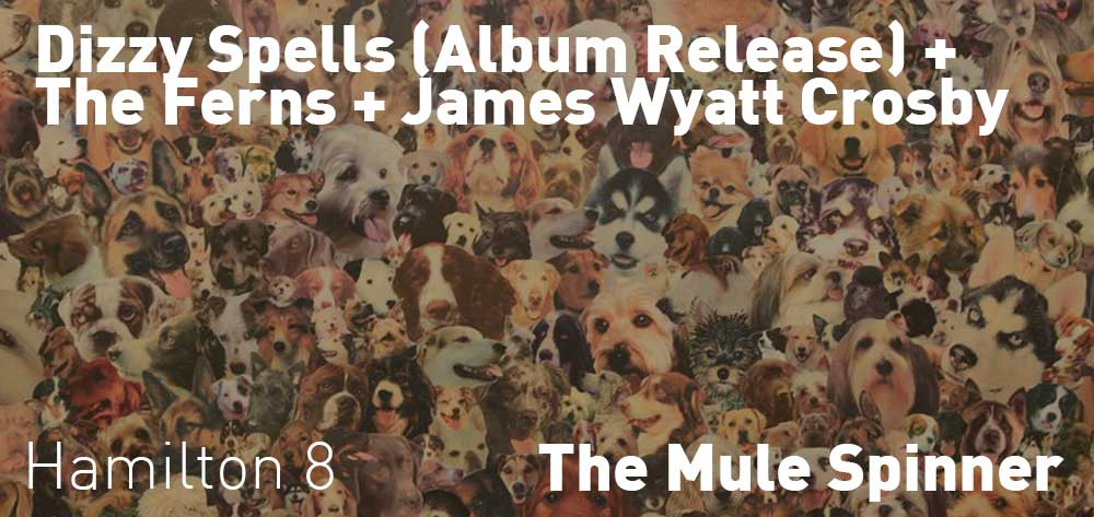 Dizzy Spells (Album Release) + The Ferns + James Wyatt Crosby | The Mule Spinner | Saturday, October 20, 2018 | 8pm