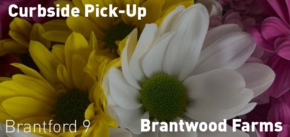 Brantwood Farms has curbside pickup from Saturdays and Sundays!