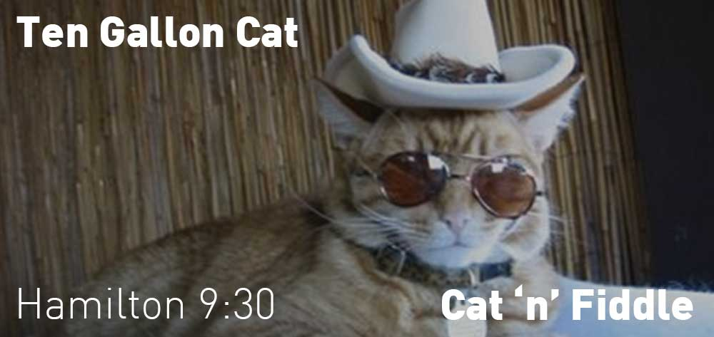 Ten Gallon Cat | Cat 'n' Fiddle | Tuesday, May 22, 2018 | 9:30pm