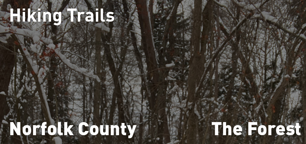 The Hiking Trails are open for your Enjoyment!
