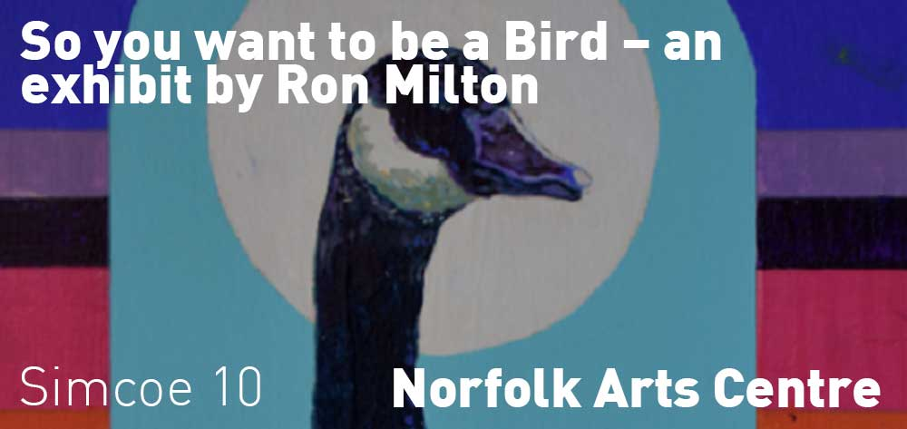 So you want to be a Bird - an exhibit by Ron Milton | Norfolk Arts Centre | June 29, 2019 - October 5, 2019