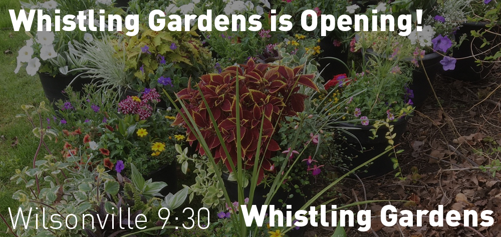 Whistling Gardens is opening on Wednesday June 3rd at 9:30 am!